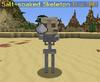 Salt-Soaked Skeleton.png