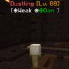 Dustling(CSST).png