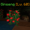 Ginseng(Appearance2).png