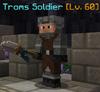 Troms soldier1.png