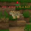 WildLeopard.png