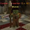 CopperBerserker.png