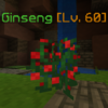 Ginseng(Appearance1).png