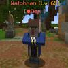 Watchman.png