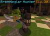 Bremminglar hunter.png