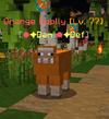 OrangeWoolly.png