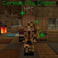 CorkusCityCitizen(BurningHouse).png
