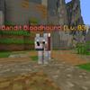 BanditBloodhound.png