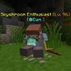 SkyshroomEnthusiast.png