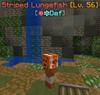 StripedLungefish.png