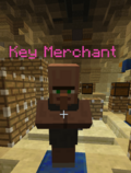 NPC Key Merchant Silverfish.png
