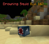 DrowningSquid.png