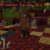ProtectorCarnisky(CLS).png