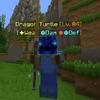 DragonTurtle.png