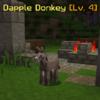 DappleDonkey.png