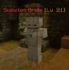 SkeletonBride.png