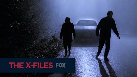 THE X-FILES 201 Days Of The X-Files FOX BROADCASTING
