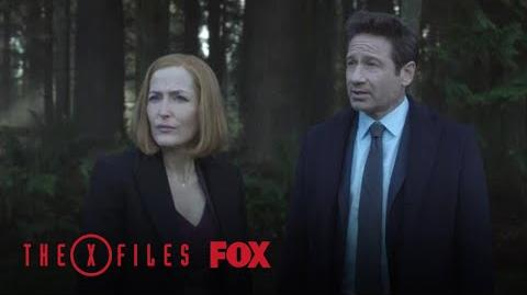 Mulder & Scully Investigate The Playground Season 11 Ep