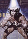 Orbik Weapon X