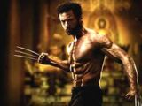 The Wolverine/ Characters