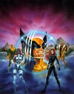 Luis Royo Wolverine