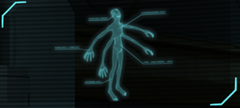 Ethereal Autopsy.png