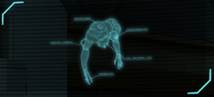 Floater Autopsy.png