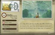 Report Drydry