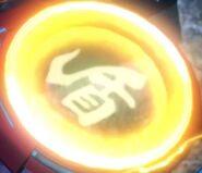 Shield Symbol 2