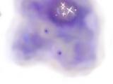 Aqua Nebula (Bionis' Leg)