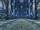 Corridor of Silence