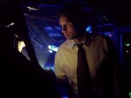 Mulder Lumière Bleue