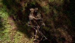 Squelettes enlacés Spores.jpg