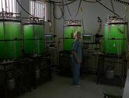 Clinique hybrides réservoirs Colonie 2