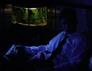 Mulder Aquarium Colonie 2