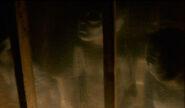 Petit-Gris Colons Extraterrestres Duane Barry