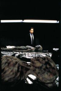 Mulder Pentagone Le Complot.jpg