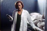 Scully Morgue Combattre le Futur