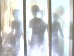 3 Extraterrestres Gris Lumière Duane Barry.jpg