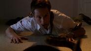 Mulder Serpents Morsure du mal
