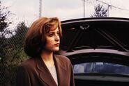 Scully Gorge Profonde