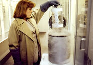 Agent Scully Foetus Extraterrestre Les Hybrides