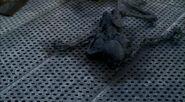 Squelette carbonisé Barrage Ruskin Patient X 2e partie