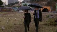 Scully Mulder Cimetière Coup du sort
