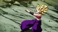 Dragon Ball Super Episode 113 0430