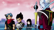 000016 Dragon Ball Heroes Episode 703014