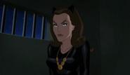 Batman v TwoFace (118)
