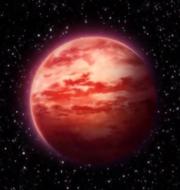 Planetvegeta.png