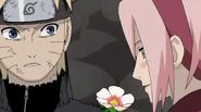 Naruto37708905