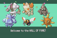 Pokemonemerald11 (42)